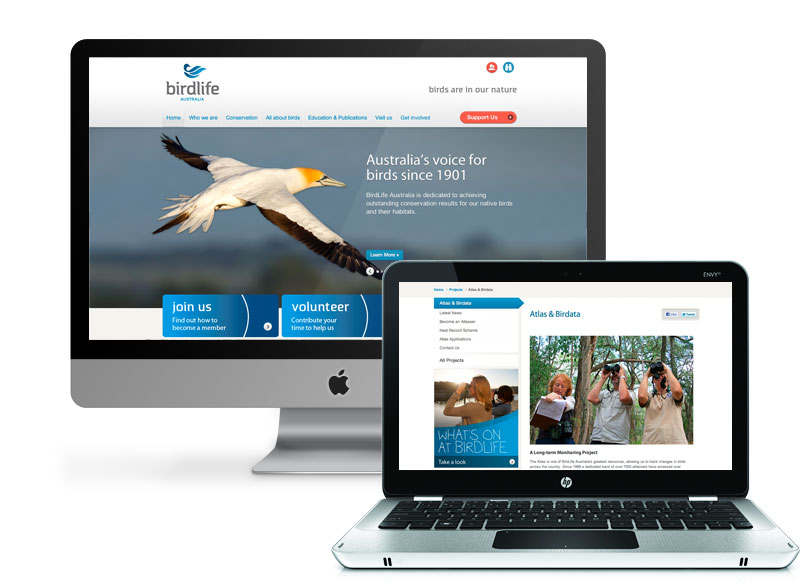 Birdlife Australia Digital Strategy